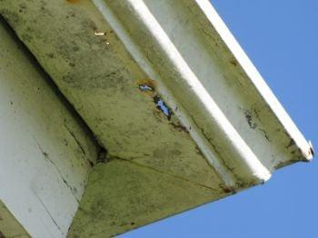 Mission Viejo Home Inspector Reports Gutter Defect